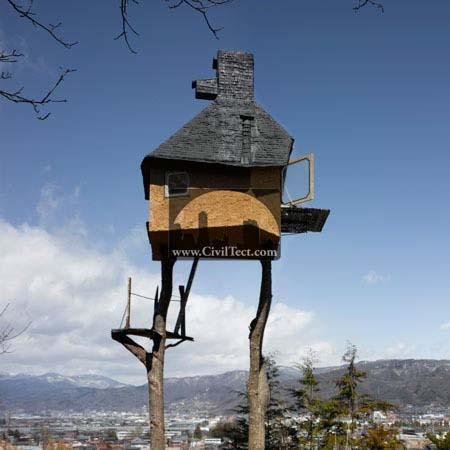 Tea House در بالای درخت – ژاپن