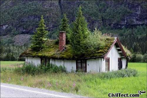 باغچه روی سقف - سقفهای سبز - سقف خانه چوبی