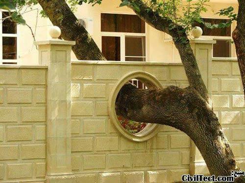 احترام به درختان - تهران