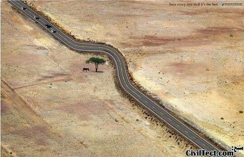 از هر درخت بگونه ای حفاظت کنید که گویا آخرین است.