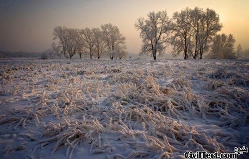 لرزه های یخی - پدیده ای نادر