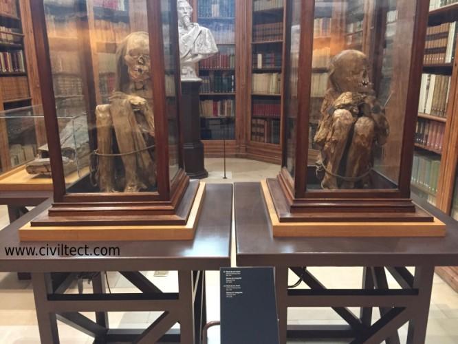 مومیایی دو کودک خردسال در موزه باستان شناسی صومعه